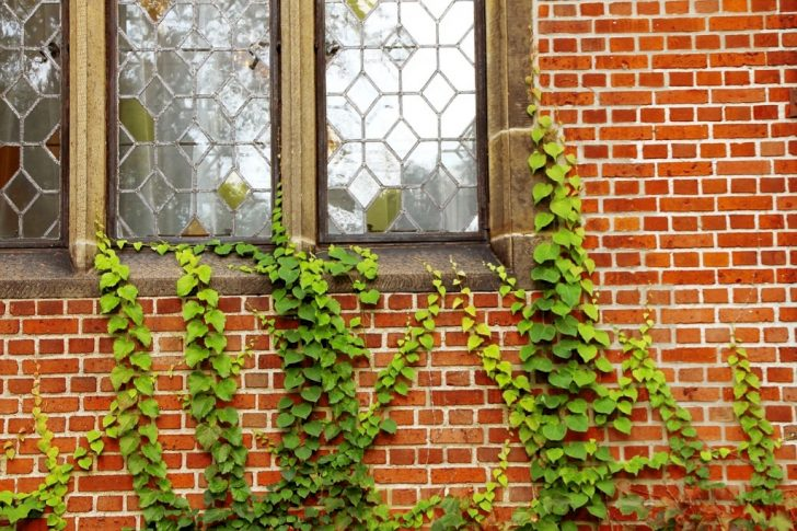 Window Replacement For Your Home Could Be Tough!